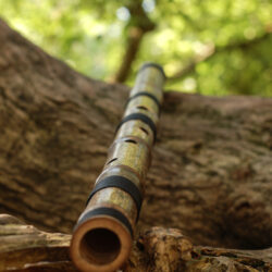 Shakuhachi flute 2.4